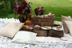 Real Events - Wedding Anniversary Picnic 1